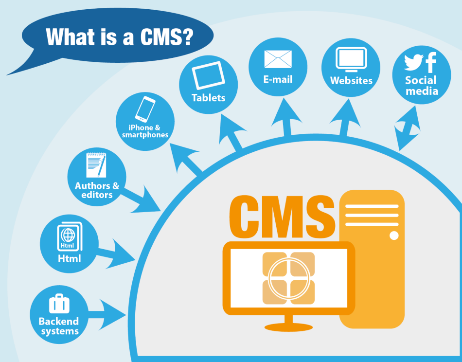 CMS for Web Development by msa technosoft