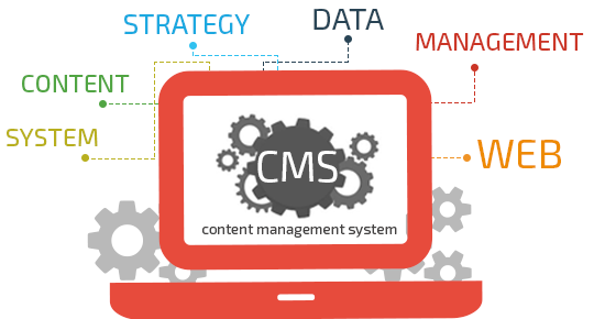 content management system for web development by msa technosoft